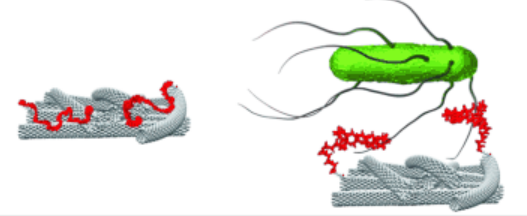 Nanotechnology sensor