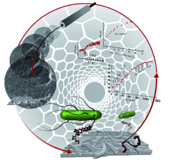 Nano Biosensor