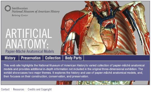 human body website